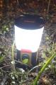 Походный фонарь со временем автономной работы 100 часов Coast EAL20 Emergency Area LED Light