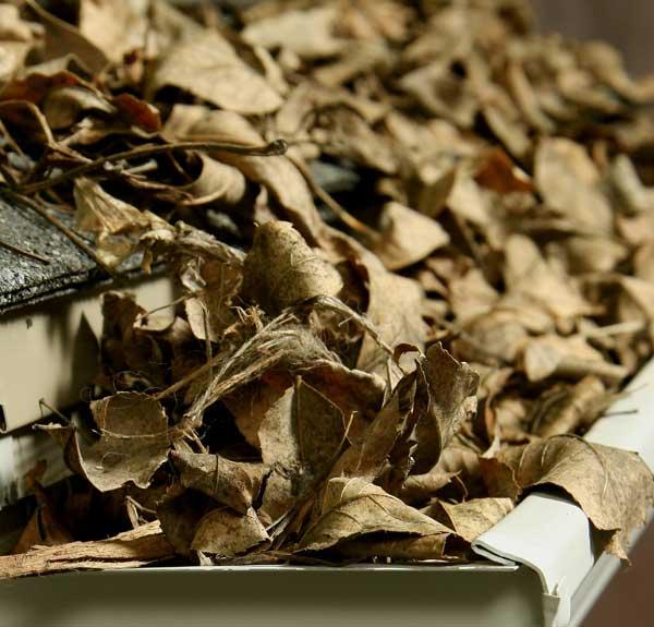 Как очистить водосточные желоба от опавших листьев и мусора