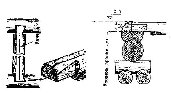 Врезка лаг в нижнюю обвязку сруба